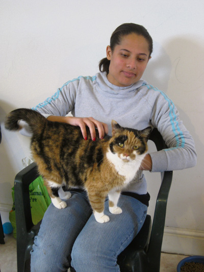 Volunteer Raania with one of the cats